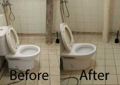 Bafore And After Toilet Cleaning