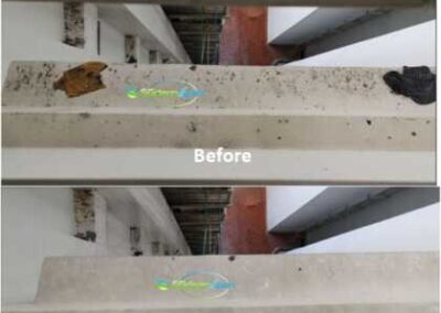 Before & After Ledge Cleaning - Bird Poop & Pigeon Dropping Cleaning