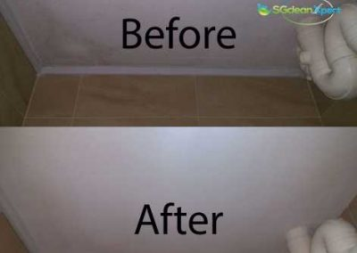 Before & After Mold Cleaning