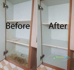 Before And After House Cleaning