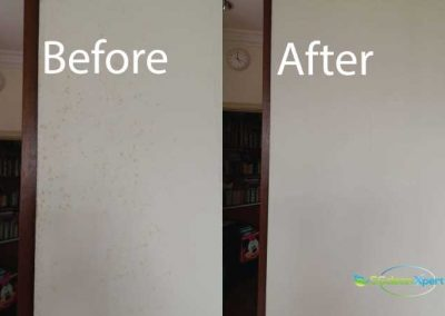 Before And After Mold Cleaning Service 2