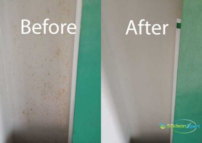 Before And After Mold Cleaning Service5