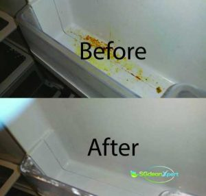 Before And After Refrigerator Cleaning