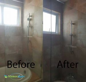 Before And After Toilet Cleaning2