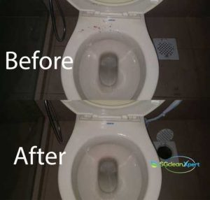 Before And After ToiletCleaning