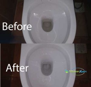 Before & After Toilet Cleaning