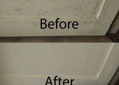 Before & After Mold Affected Door Cleaning