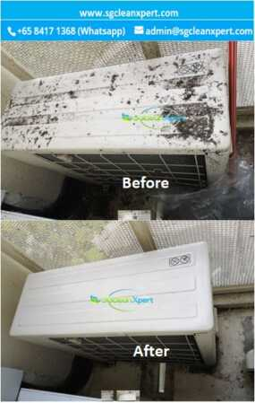 Before and After Aircon Ledge Cleaning - Pigeon Dropping & Bird Poop Cleaning