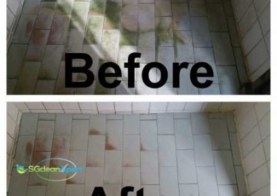 Before And After Floor Mold Cleaning