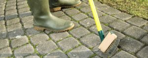 gardener-scratching-moss-out-of-paving-stones