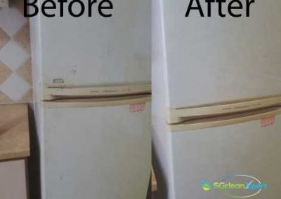 Before & After Fridge Cleaning