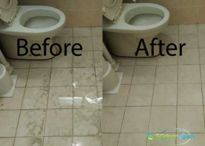 Before & After Toilet Floor Cleaning
