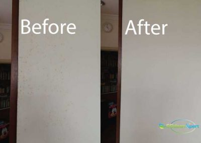 Before And After Mold Cleaning Service4