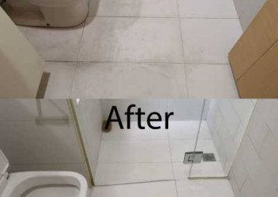 Before And After Toilet Cleaning