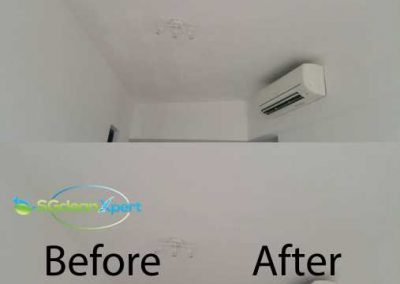Before And After Clean Ceiling Mold Cleaning