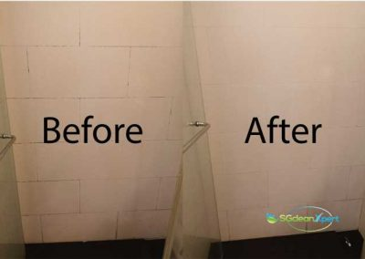 Before & After Mold Affected Wall Cleaning